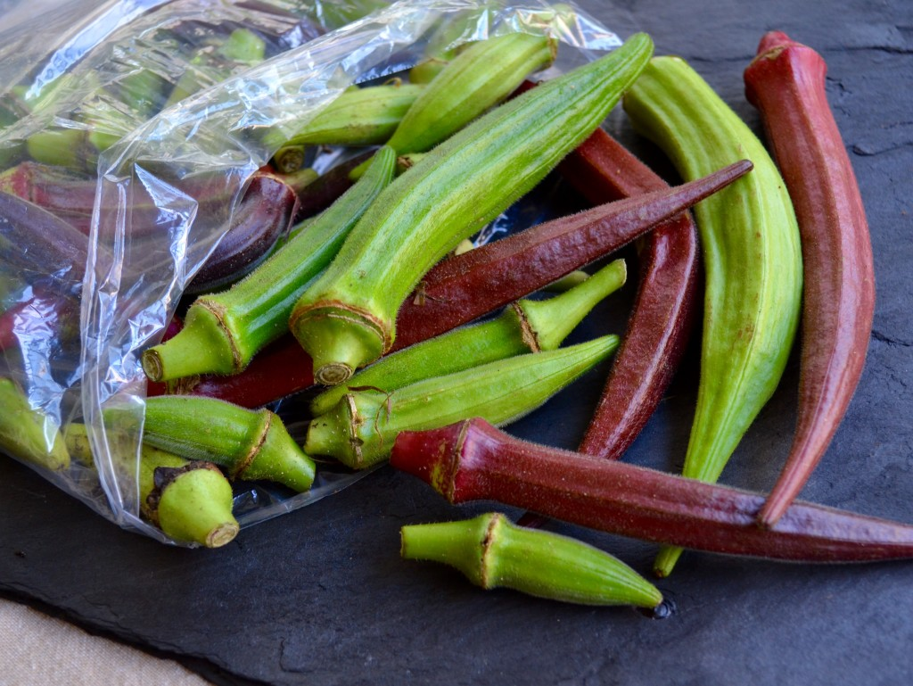 okra-myvegtable