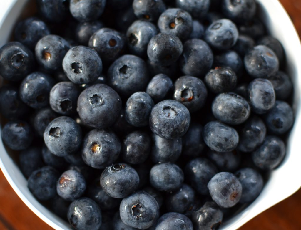 blueberries-myvegtable