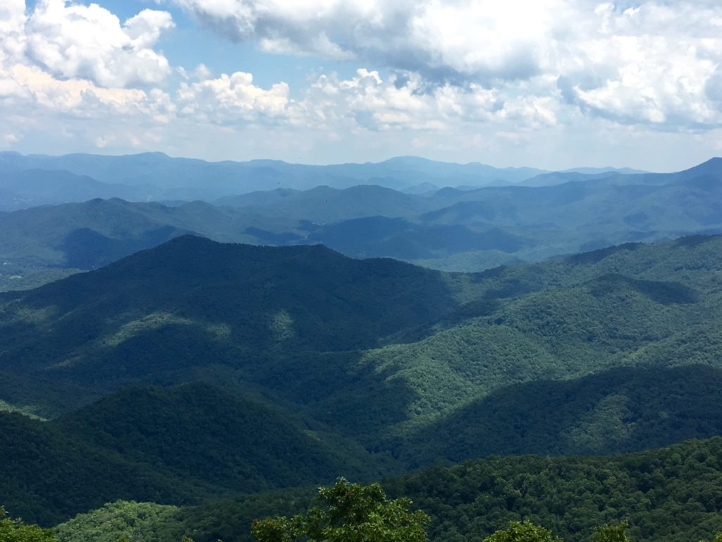 nc-mountain-view-myvegtable